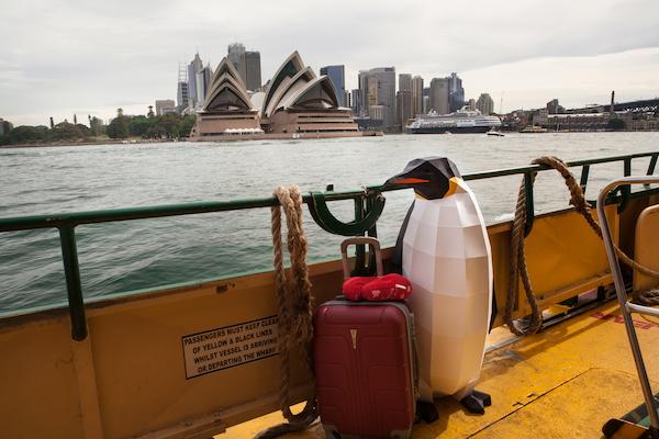 Greenpeace lancia la spedizione in Oceano Antartico per la più grande area protetta del Pianeta