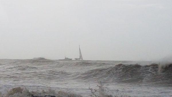 Guardia Costiera di Roma soccorre catamarano semi affondato vicino all'imboccatura del Porto Turistico di Roma