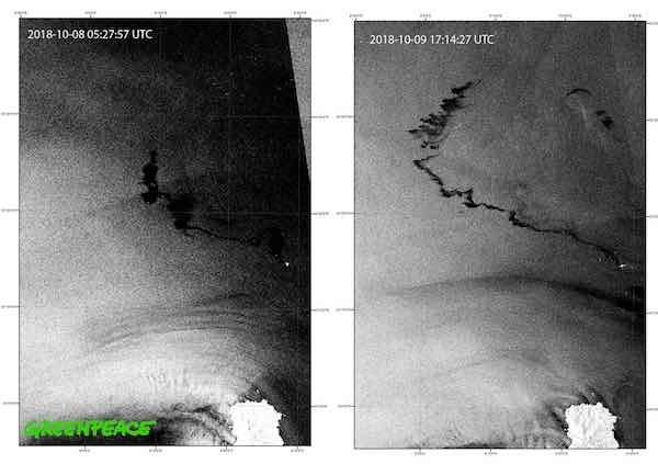 Collisione navi nel Santuario dei Cetacei, Greenpeace: «Immagini satellitari mostrano che contaminazione da idrocarburi interessa ormai oltre 100 chilometri quadrati»