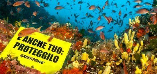 """Nuovo report di Greenpeace: """"Le grandi multinazionali dietro l'inquinamento da plastica"""""""
