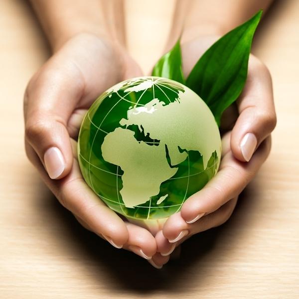 Ecospiritualità: filosofia di vita per un mondo migliore