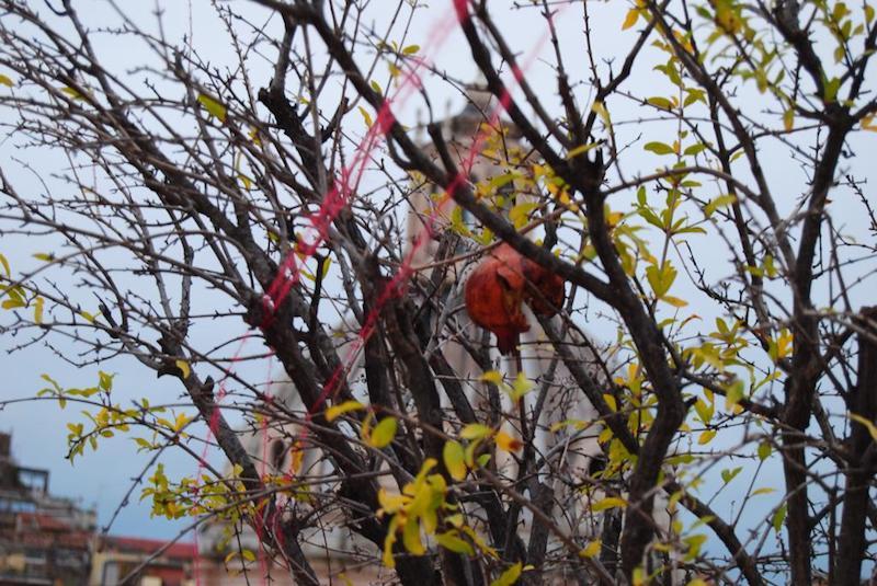 Butterfly Dream: Uemon Ikeda e Janet Park al Macro Asilo