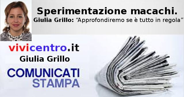 """Sperimentazione sui Macachi, Giulia Grillo: """"Approfondiremo se è tutto in regola"""""""