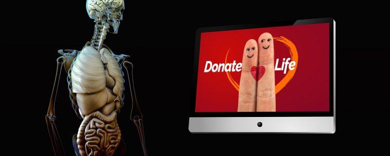 Donazione organi, firmato il regolamento sul Sistema informativo trapianti (Sit).