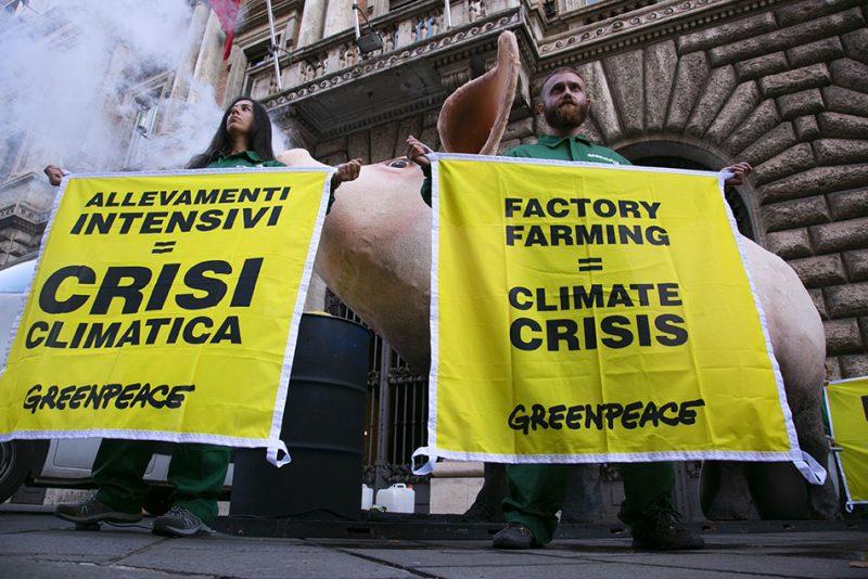 Greenpeace: sostegno alla protesta dei Fridays For Future, il Governo mostri coraggio e modifichi il PNIEC