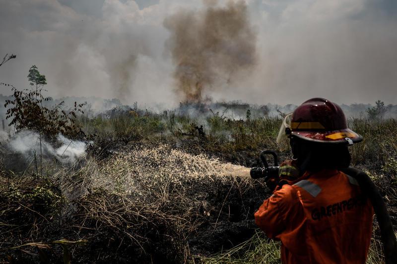 Greenpeace: l'Indonesia brucia, multinazionale e commercianti di olio di palma ancora coinvolti