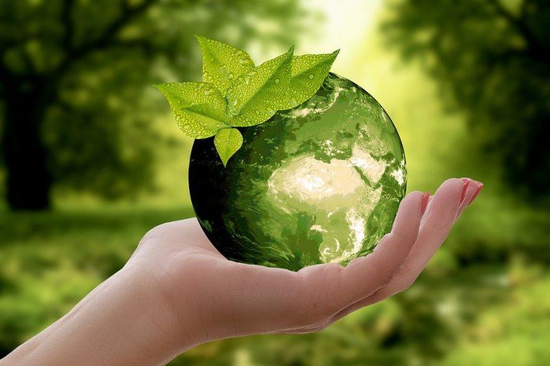 Formazione docenti sulla sostenibilità ambientale. Le Associazioni ambientalistiche: Che senso ha affidarla all'ENI?
