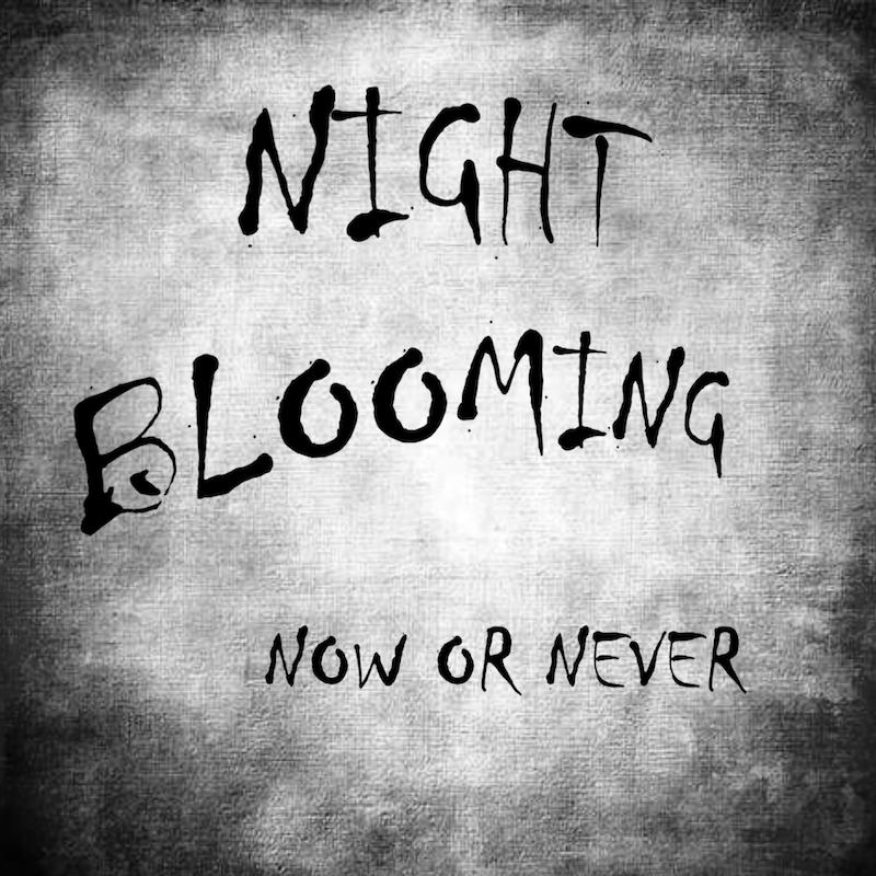 """""""Now or Never"""" dei Night Blooming: Registrazione in presa diretta per l'EP di esordio della band"""