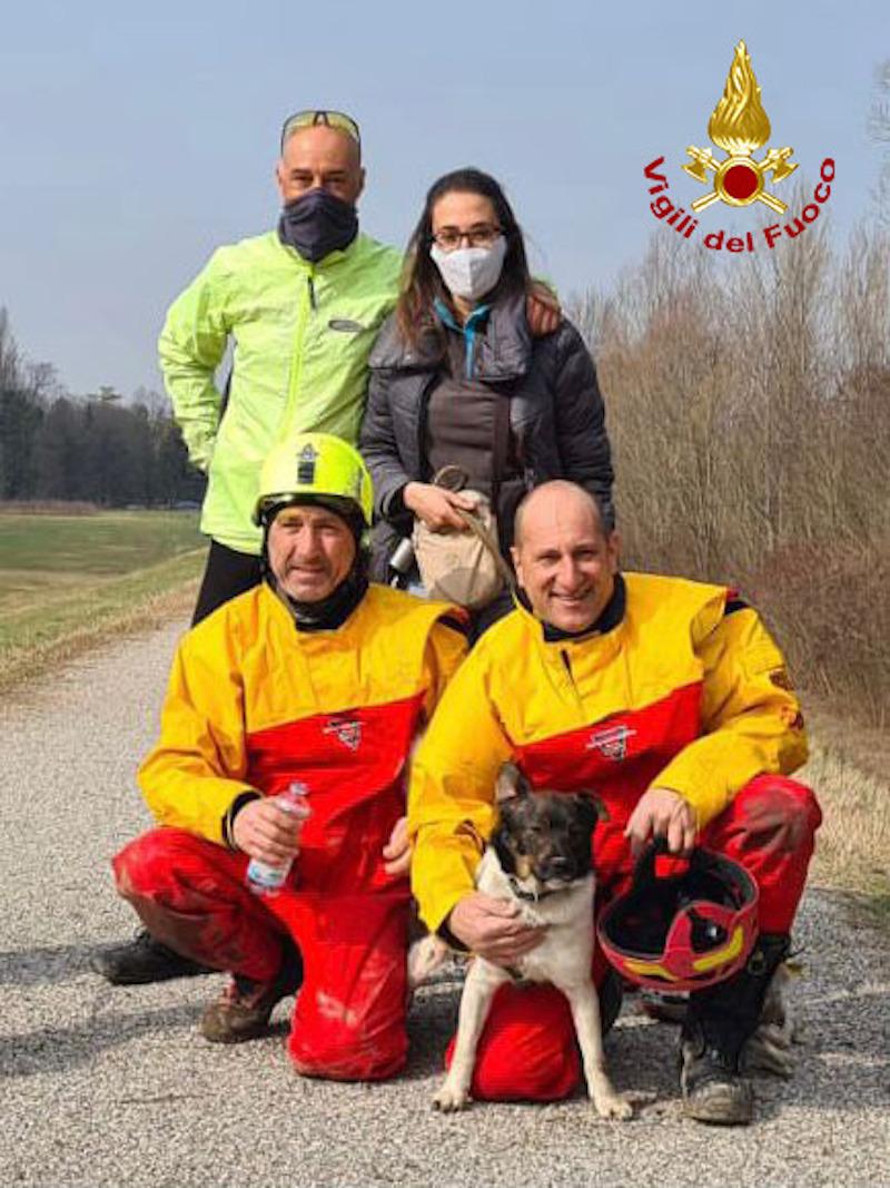 Vigili del Fuoco – Padova Loc. Lungargine Brentella, Salvato un cane rimasto bloccato nella tana di una Nutria