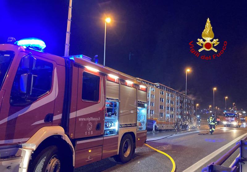 Vigili del Fuoco – Chioggia Loc. Sant'Anna (VE), Incendio di un autoarticolato che trasportava bovini, illesi gli animali