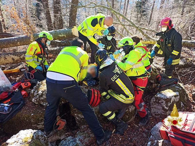 Vigili del Fuoco – Conco (VI), Boscaiolo ferito dalla caduta di un albero trasferito in eliambulanza all'ospedale di Vicenza
