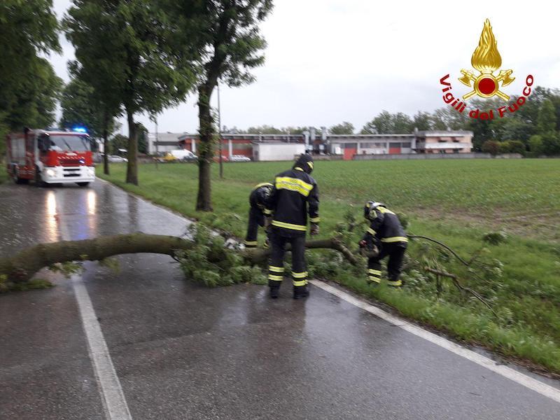Vigili del Fuoco – Treviso, Interventi in tutta la provincia a causa della forte ondata di maltempo