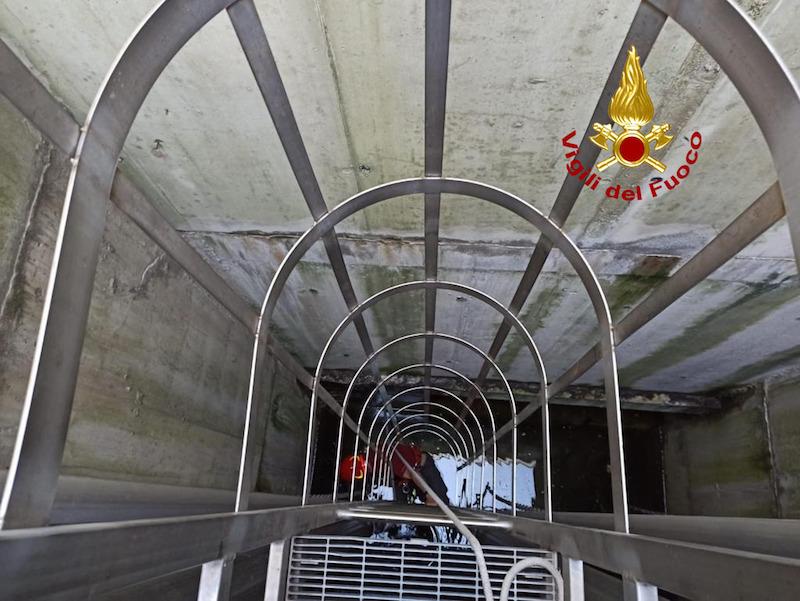Vigili del Fuoco – Padova, Salvati 5 anatroccoli precipitati nelle caditoie di recupero acqua del sottopasso di Via Ronchi Alti