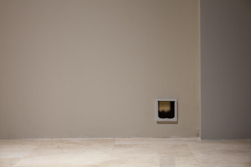 """Palazzo delle Esposizioni: venerdì 16 luglio alle 17.00 presentazione del volume """"Fuori"""" pubblicato da Treccani per la Quadriennale d'arte 2020"""
